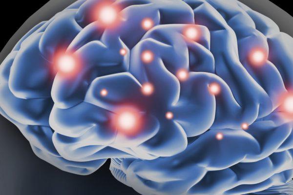 Mindfulness i hjärnan.
